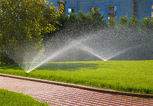 an irrigation system optimized by our Spring sprinkler repair team